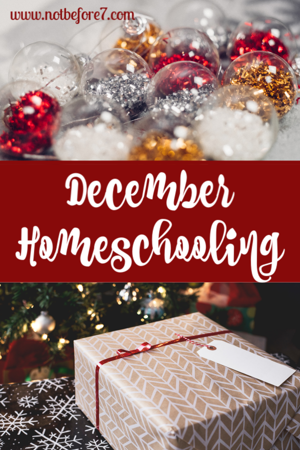 What will December homeschooling look like in your house? Here is a peek at our plan.